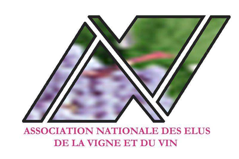 Logo  ANEV  2009_resultat