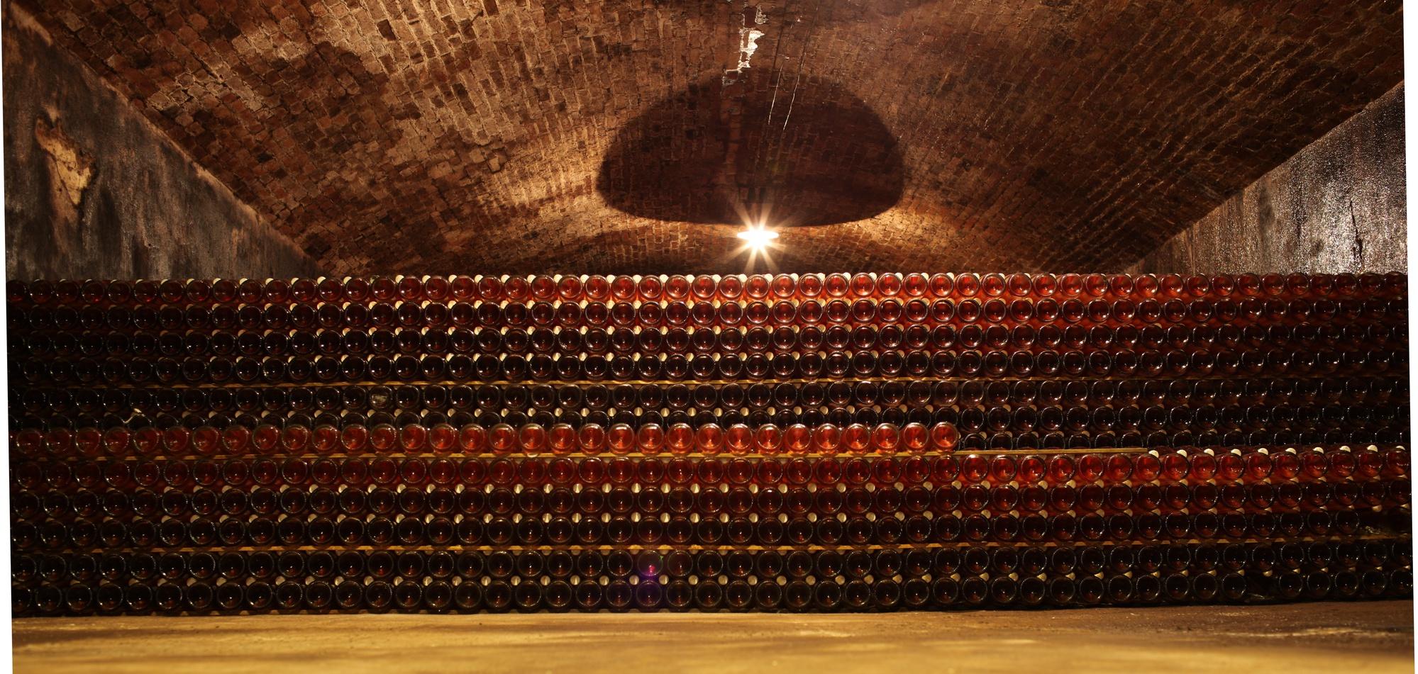 Cantine di vini